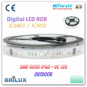 LED Strip SMD 5050 12V IP66 / IP68 Rubber Tube Digital  - BRILUX - E13